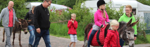 Boerderijcamping in Brabant